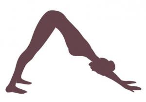Yoga übung Der gestreckte Hund